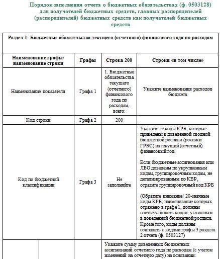 инструкция 191н форма 0503128
